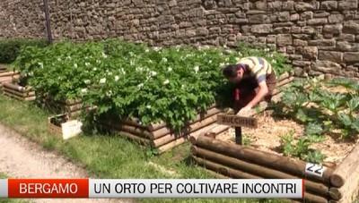 Bergamo - In Città Alta un orto dove si coltivano incontri