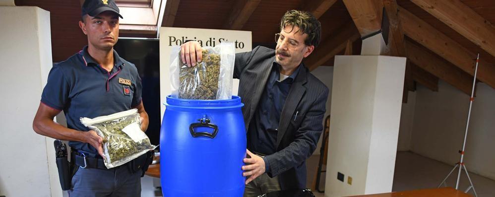 Controllato uno studente a Treviglio A casa 1 kg e mezzo di marijuana