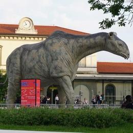 Dal dinosauro per addormentarsi C'è la Ztl: 5 multe per il sonnellino