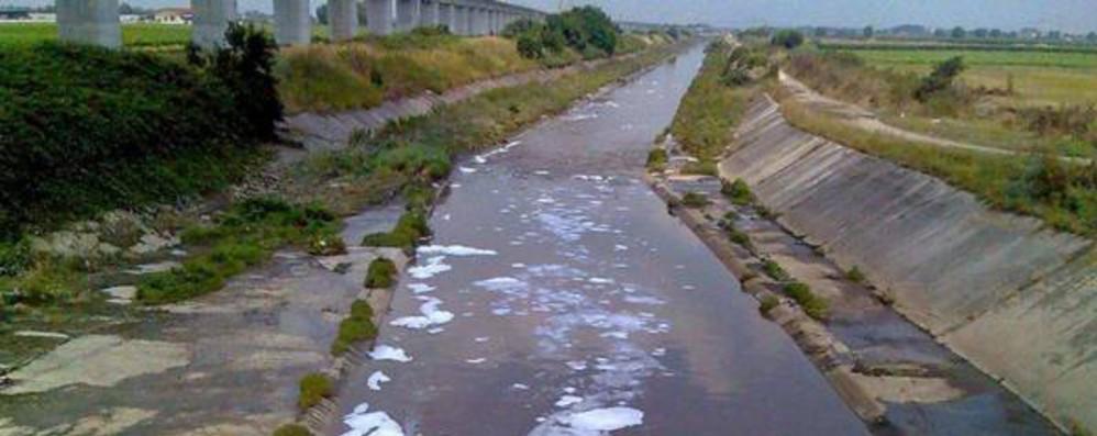 Acqua: inquinamento da nitrati in moderato calo in Ue