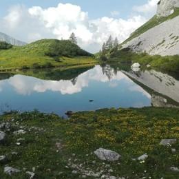 Lo specchio del lago