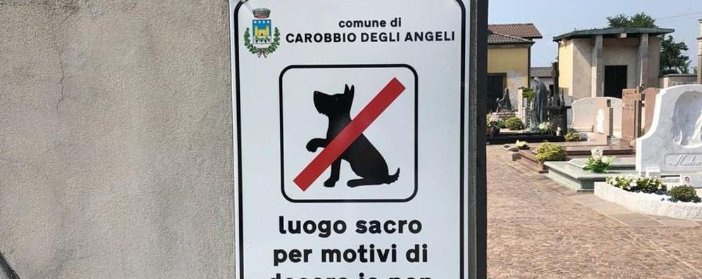 «No ai cani al cimitero»: il nuovo divieto fa scoppiare la polemica a Carobbio