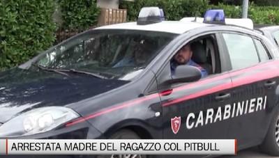 Arrestata la madre del ragazzo con il pitbull