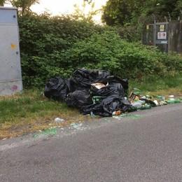 Seriate si sveglia con i rifiuti per strada «Li getteremo nel giardino dell'incivile»