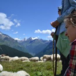 15 giorni da incanto sulle Orobie Da tutta Italia per un'estate da pastori