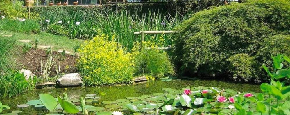 Orti botanici aperti, non solo a Bergamo Oasi di benessere nei giorni più caldi