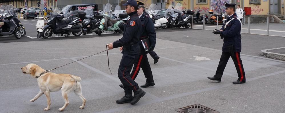Bassa, blitz dei carabinieri alle stazioni Cento identificati, in campo cani antidroga