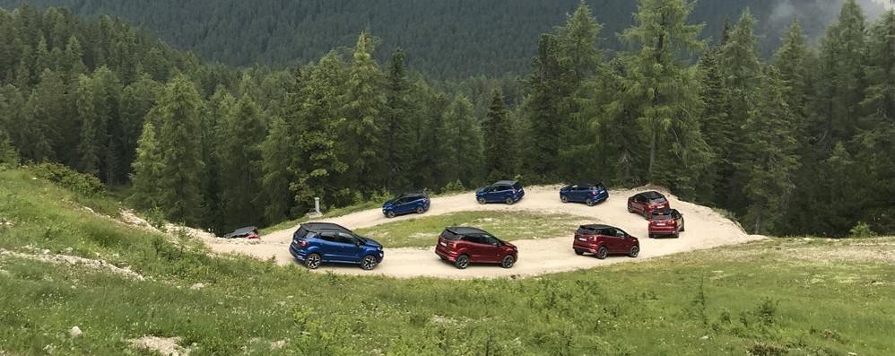 Su Ford EcoSport  la trazione integrale
