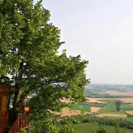 Un albero di 30 piani a Villa di Serio