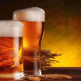 Un seminario per capire  il gusto delle birre