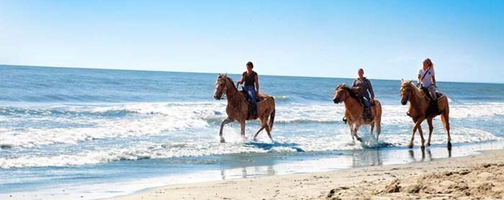 A cavallo e in bicicletta nel Parco del Delta del Po