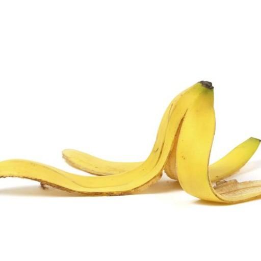 Getta dal furgone una buccia di banana 25enne svizzero multato a Seriate