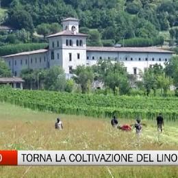 Torna il lino a Bergamo. E vestirà un palazzo della città