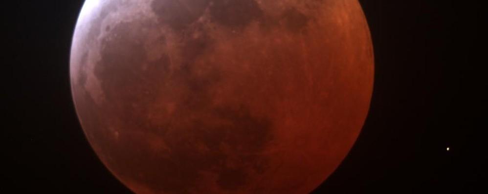 Occhi puntati al cielo, la luna è rossa Invia la tua foto dell'eclissi da record