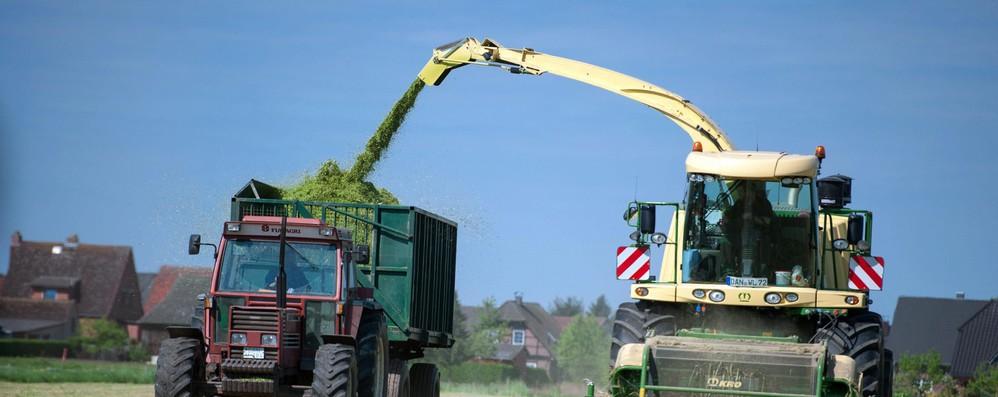 Network innovazione Ue promuove biogas italiano