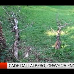 Cade dall'albero, grave 25 enne di Cene