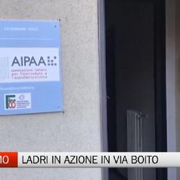 Bergamo, ladri in azione all'AIPAA di via Boito