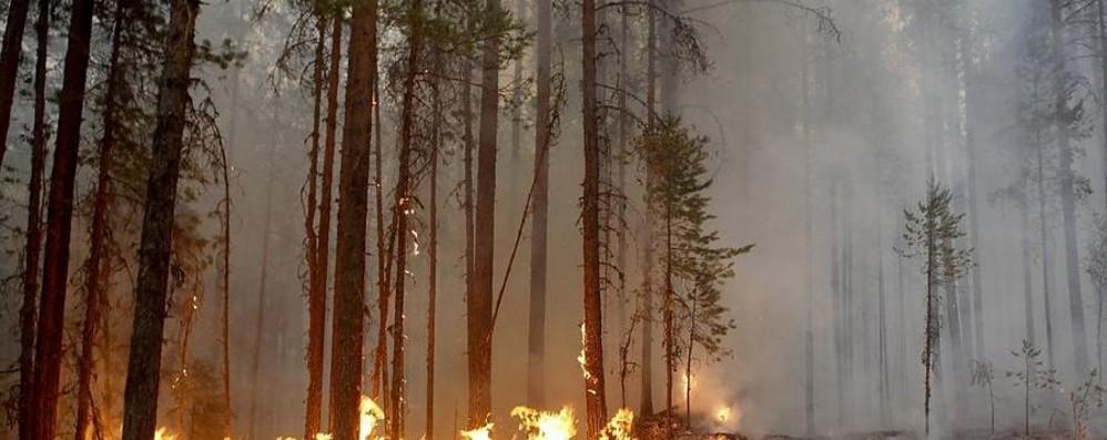Supercaldo e incendi Il clima impaurisce