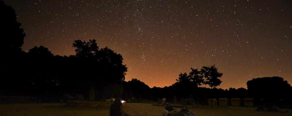 San Lorenzo, la notte delle stelle cadenti quest'anno sarà tra il 12 e il 13 agosto