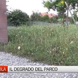 Colognola - Parchi abbandonati, la protesta dei residenti