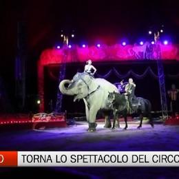 Per Sant'Alessandro torna la magia del circo