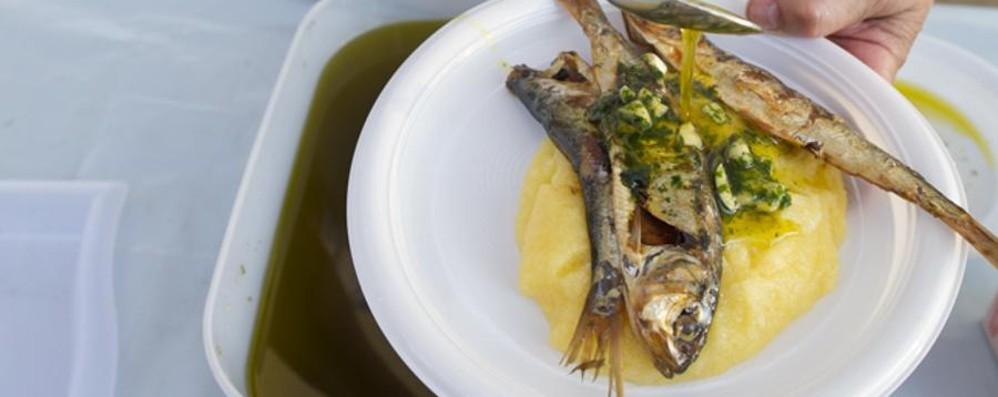 Sagra del pesce a Canonica