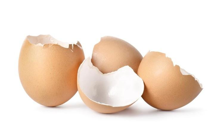 Lanciano uova dalla finestra dell'hotel «Puniti» cinque giovani bergamaschi