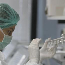 Allarme polmonite in Lombardia «Nella Bergamasca nessun problema»