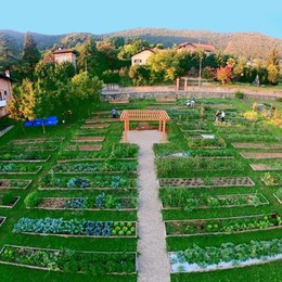 Inaugurati gli orti al parco del Quintino L'agricoltura urbana sbarca al Monterosso