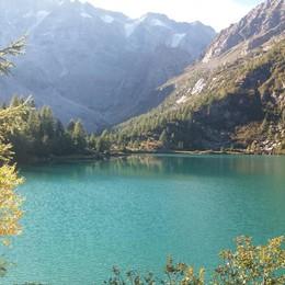 «Lago verde ghiaccio...»