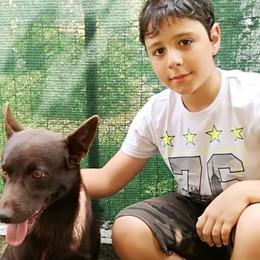 Lorenzo e il suo cane Red Traversata a nuoto per sfidare il diabete