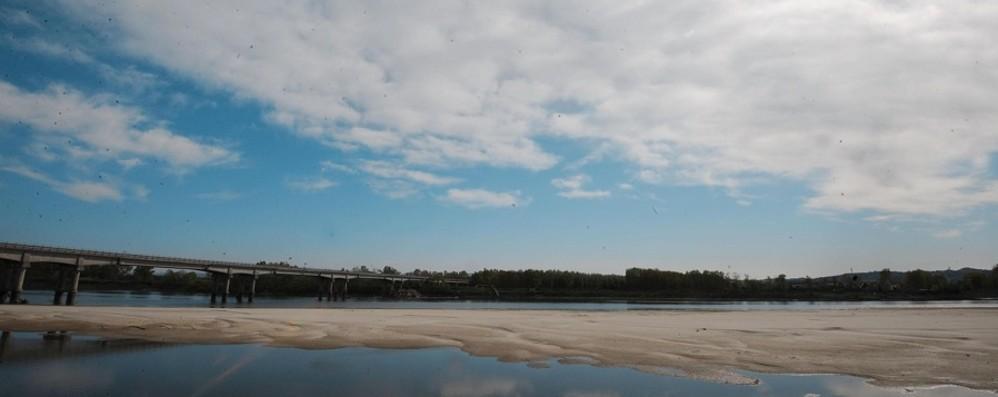 Allarme siccità al Nord Coldiretti, il Po sotto di 3,5 metri