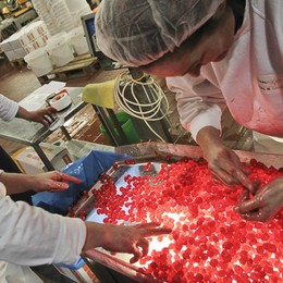 Italcanditi cede il 70% a Investindustrial Goffi: «Un partner per crescere ancora»