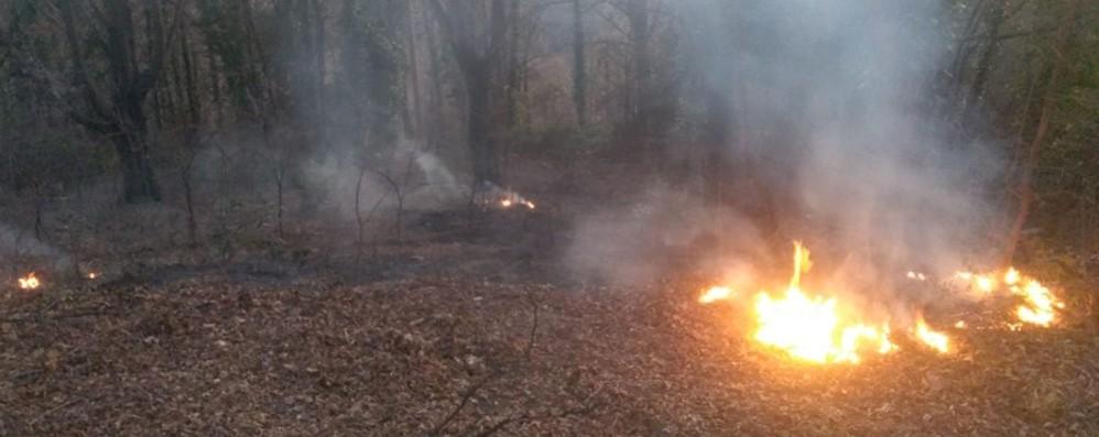 Parco dei Colli, allarme incendi Tre episodi in un mese