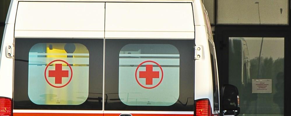 Ciclista investito e ucciso a Modena Individuato camionista pirata a Bergamo