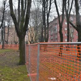 Malpensata, arriva il parco-avventura Cantiere al via per il «bosco» in città
