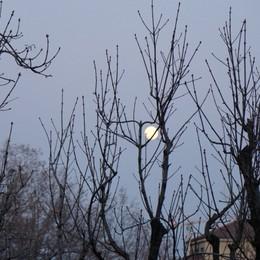 Una grande luna