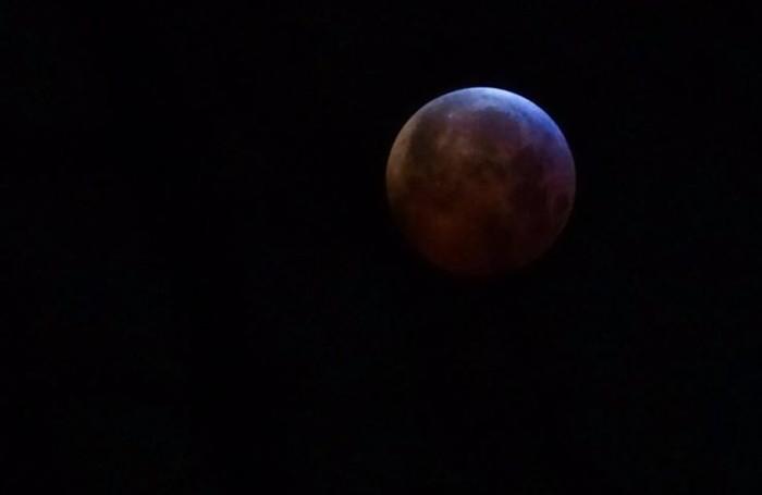 La luna di Francesca Turra