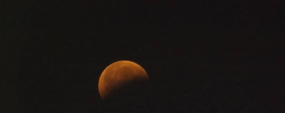 Ecco l'eclissi e la magia della luna Bergamo si sveglia presto - le foto
