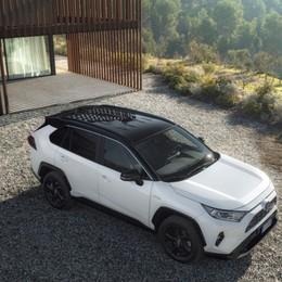 Toyota Rav4 Hybrid alla quinta generazione