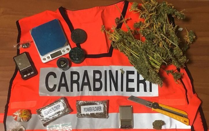 Arrestati due bergamaschi a Cremona In auto hashish e marijuana
