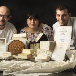 Cheese Awards, i formaggi più buoni? Ecco le medaglie bergamasche