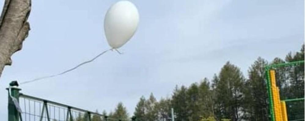 Il ricordo di Charlotte in un palloncino Dalle Fiandre un filo con la Bergamasca