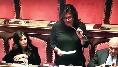 Omicidio di Cologno l'intervento della senatrice Alessandra Gallone