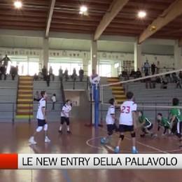 Csi - Le new entry della pallavolo
