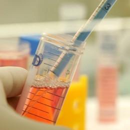 Commercio illecito di farmaci dopanti Sequestri e denunce anche a Bergamo