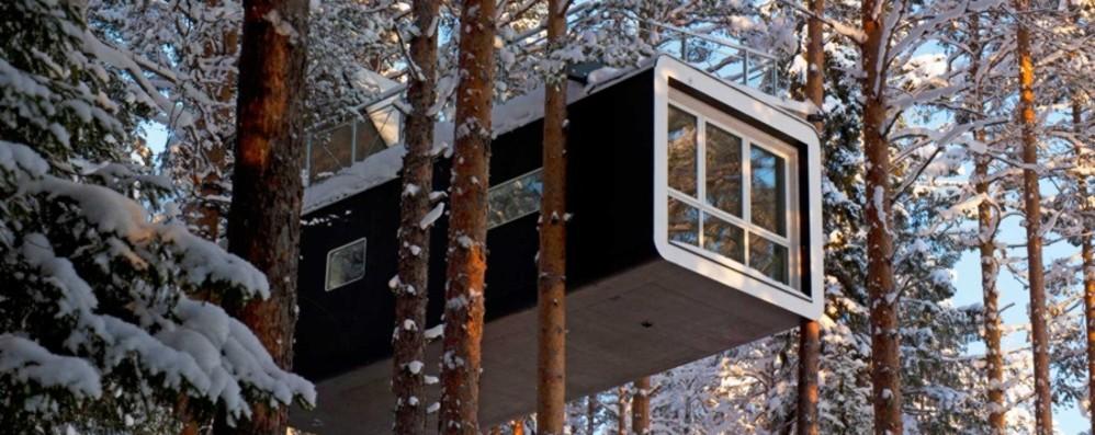 Hotel di design sugli alberi nella Lapponia svedese