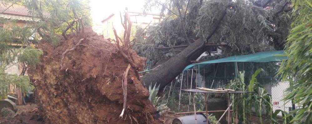 I danni del maltempo estivo in Lombardia Il governo dice no allo stato d'emergenza
