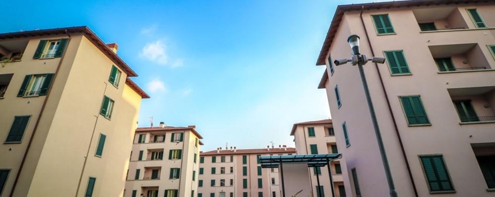Case popolari, 395 richieste per 59 alloggi Domande solo on line, è polemica