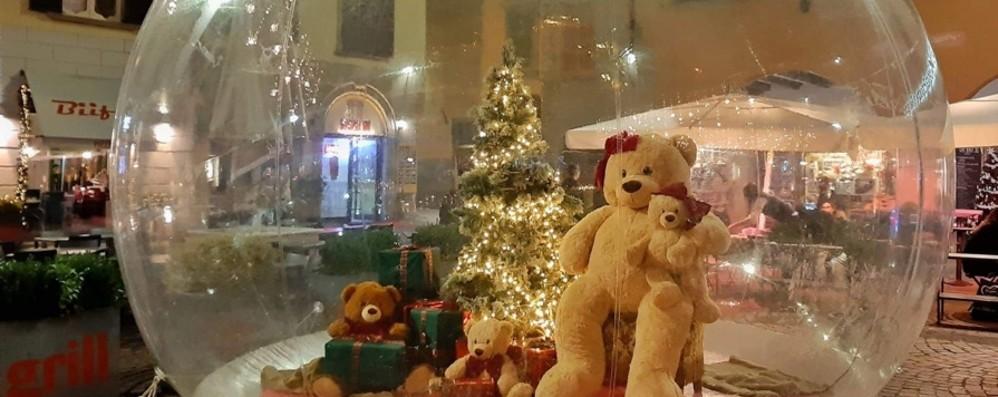 «Ho visto l'orso alla stazione di Verdello» Continua la caccia al peluche solidale